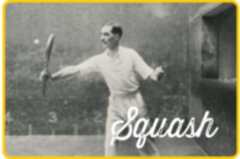 View the Image gallery : Squash